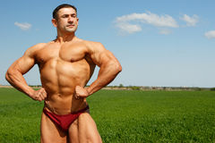 Muscles ans nature royalty free stock photos