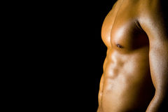 muscles d'adbominal Images libres de droits