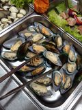 Muscles in food trays Stock Photos
