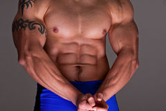 Muscles Male Royalty Free Stock Photo
