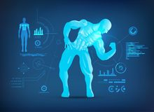 Muscles post. Concept of sports science, muscle man posting for body analysis, a bodybuilder showing biceps and muscles Stock Photo