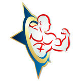 Muscles vector Royalty Free Stock Photos