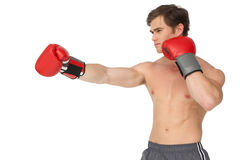 Muscly man wearing red boxing gloves and punching Royalty Free Stock Photography