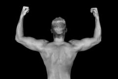 Muscoli immagini stock libere da diritti