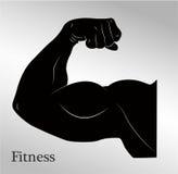 Muscoli del braccio dell'uomo del bicipite del fumetto Immagini Stock