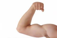 Muscolo Fotografie Stock