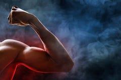 Muscolo del braccio dell'uomo fotografie stock libere da diritti