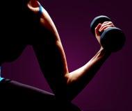 Muscolo della costruzione Immagini Stock