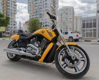 Muscolo di Harley davidson Novorossijsk La Russia 13 05 2017 Immagini Stock Libere da Diritti