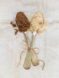 Muscovado and demerara organic brown sugar Stock Photography