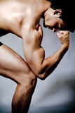 Musculaire images stock