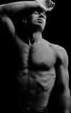 Muscular. Male fashion shot, muscular guy royalty free stock photos