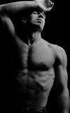 Muscular Royalty Free Stock Photos