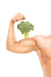 Muscular arm with a broccoli on the bicep Royalty Free Stock Photos