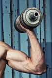 Muscular arm with dumbbell close up Stock Images