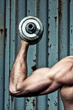 Muscular arm with dumbbell close up Royalty Free Stock Photos