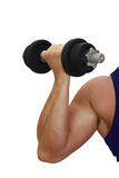 Muscular arm Stock Images
