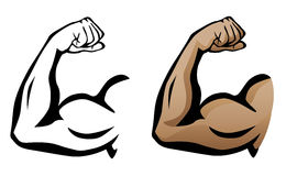Muscular Arm Flexing Bicep Illustration. Sharp clean illustration of arm flexing with large muscles, both as a black line drawing and flesh color version royalty free illustration