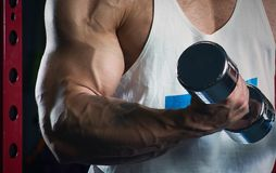 Muscular arm with veins doing biceps with dumbbells in the gym. In the evening stock image