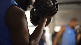 Muscular arms of athlete doing dumbbell curls, man building strong biceps in gym. Stock footage stock footage