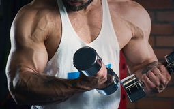 Muscular arms doing biceps with dumbbells in the gym. Man with beard. In the evening stock photo