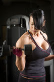 Muscular asian woman working out with weights Stock Images