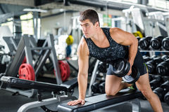 Muscular Athlete Working Out with Dumbbells. Portrait of muscular man working out with dumbbells on bench in modern gym, flexing and pumping arm muscles Royalty Free Stock Photography