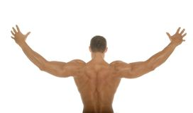 Muscular athletic body builder back Royalty Free Stock Photos