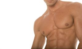 Muscular athletic body builder chest Royalty Free Stock Photo
