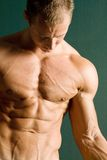 Muscular athletic body builder chest Royalty Free Stock Photos