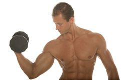 Muscular athletic body builder working out with dumbbell Stock Photos