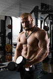Muscular athletic bodybuilder Royalty Free Stock Photos