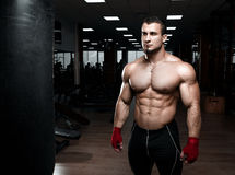 Muscular athletic bodybuilder Royalty Free Stock Images