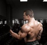 Muscular athletic bodybuilder Royalty Free Stock Photos