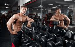 Muscular athletic bodybuilder Royalty Free Stock Photography