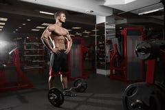 Muscular athletic bodybuilder Stock Image