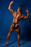 Muscular athletic man in a pose with his back stock photography