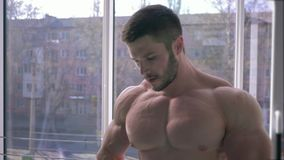 Muscular Attractive bodybuilder guy is drinking protein shake drink next to strength training in sport gym. Against window stock video