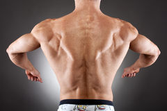Muscular back Stock Photos