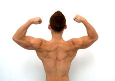 Muscular Back Royalty Free Stock Photography