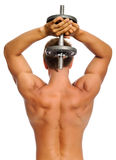 Muscular back of athelete Stock Images