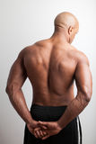 Muscular Back Royalty Free Stock Image
