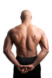 Muscular Back and Shoulders Royalty Free Stock Photos