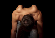 Muscular back Stock Photography