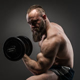 Muscular bearded bodybuilder guy doing exercises with dumbbells. Royalty Free Stock Photos