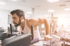Muscular bearded man during workout in the gym. A portrait of a focused athletic male model in white clothes doing dips. On parallel bars . Indoor fitness Royalty Free Stock Photo