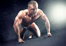 Muscular body. Stock Photography