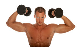 Muscular body builder Stock Image