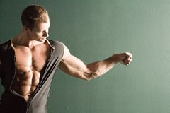 Muscular body builder. Chest and arm Royalty Free Stock Photography