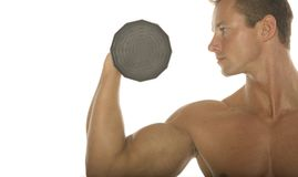 Muscular body builder royalty free stock image